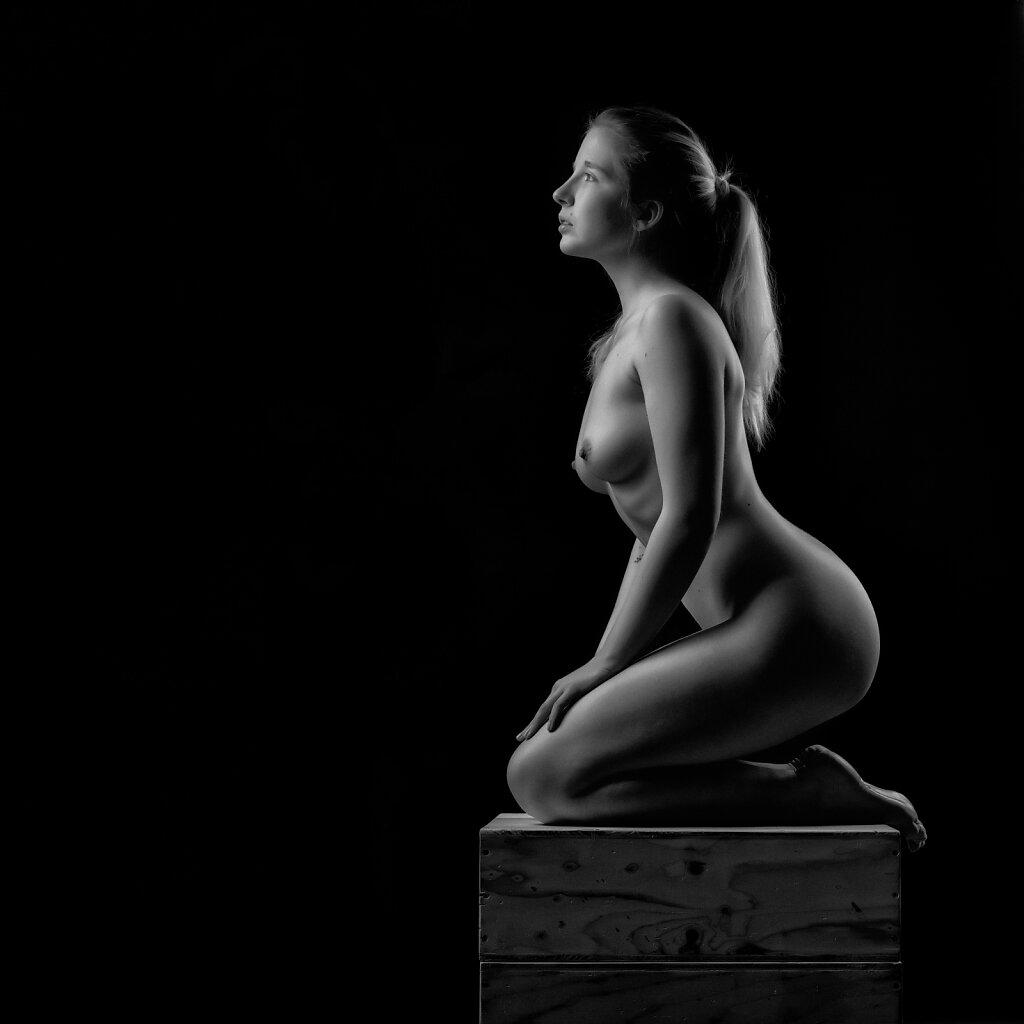 Akt und Erotisches im Studio